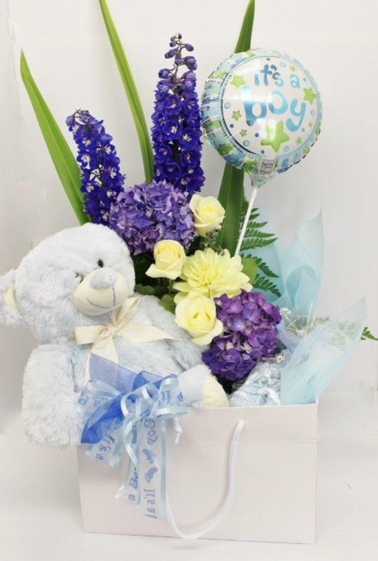 Baby-Boy-Blue-image1