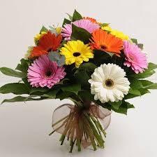 Gerbera Bouquet aux natural
