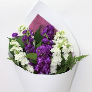 white and purple stock with greenery